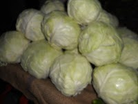 Cabbage by P V Ariel