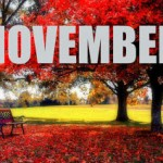 Do You Know The Importance of November? The Horrifying 9/11 Attack And Few Other Things to Remember !!