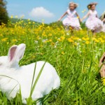 E is For Easter: The Pagan Origin of Easter
