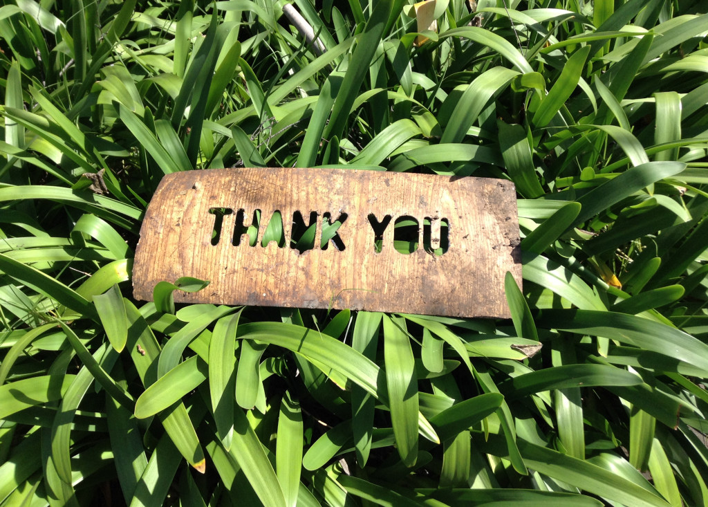 thank-you-1243804