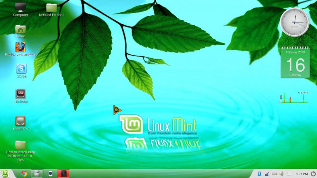 Linex Mint Cinnamon