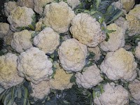 Cauliflower by P V Ariel