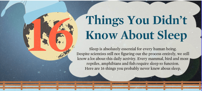 Amazing facts on sleep