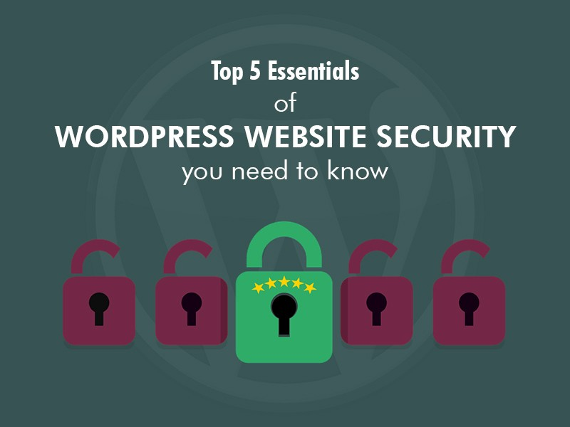 Top 5 Essentials of WordPress Website Security you Need to Know